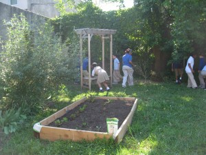 Building the bed garden.