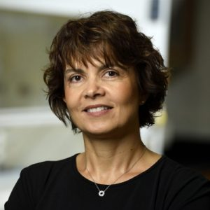 "Women in Cancer Research Fall Mini Seminar Series: Efronsini ""Efie"" Kokkoli @ Croft Hall G40, JHU Homewood campus"
